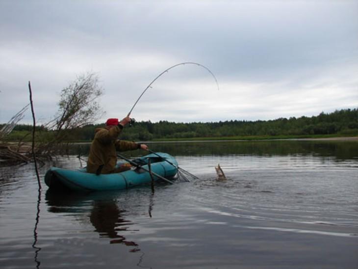 как багрить рыбу с лодки