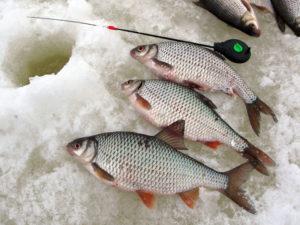 Три рыбы и удочка