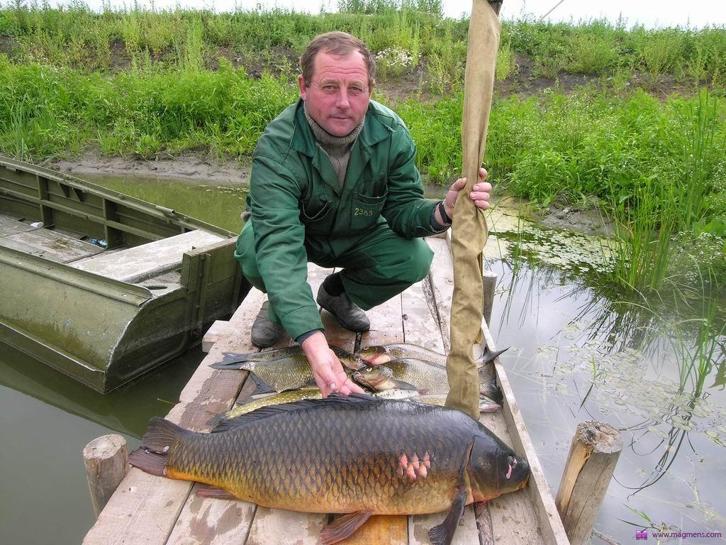 все о рыбалке и снастях в ростовской области