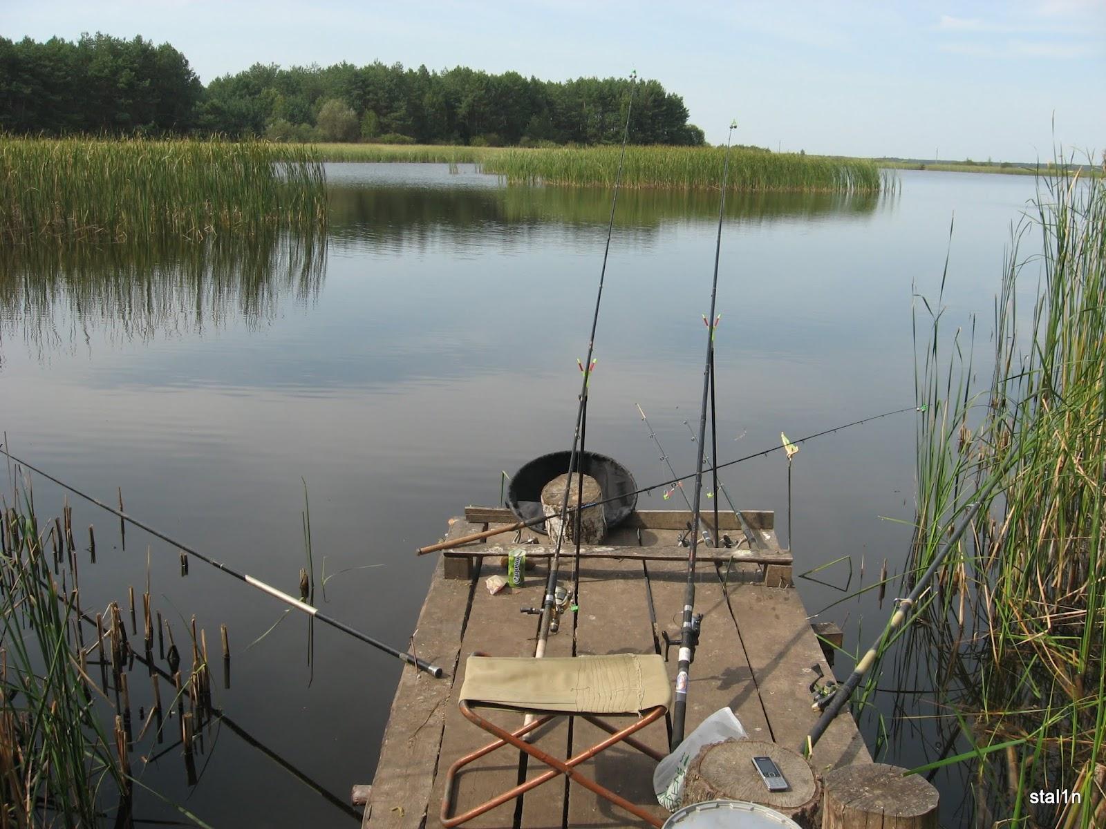 Все для рыбалки фото