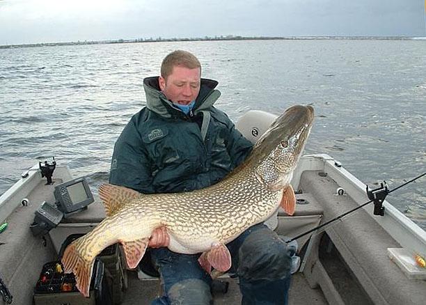Мужик в лодке с огромной рыбой