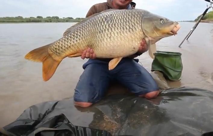 Рыбак с огромным сазаном