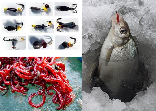 Рыба наживка и снасти