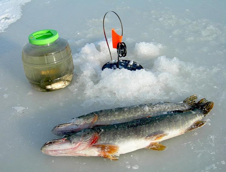 Снасть две рыбы
