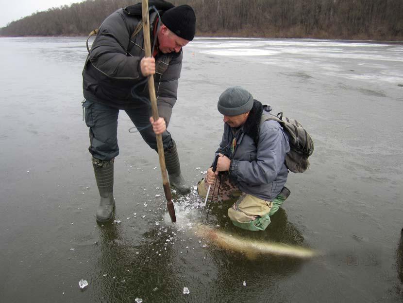 Два рыбака на льду