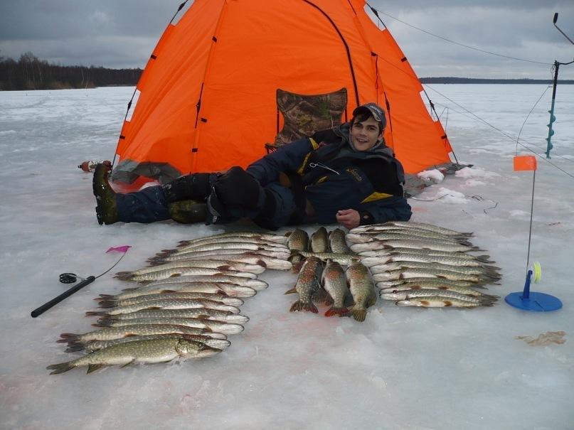 Палатка рыбак и куча рыбы