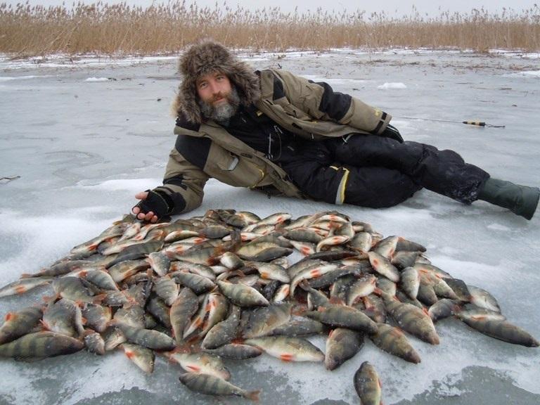 Бородатый мужик и куча рыбы