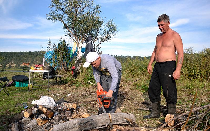 Мужики пилят дрова бензопилой