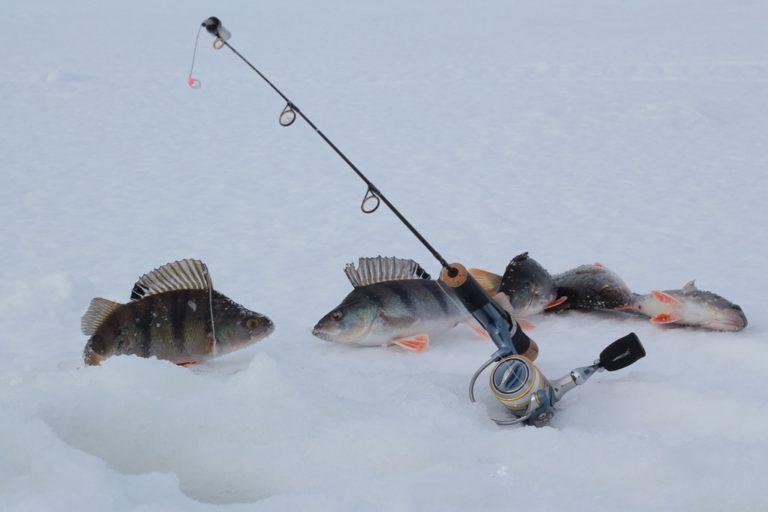 Подледная рыбалка руками