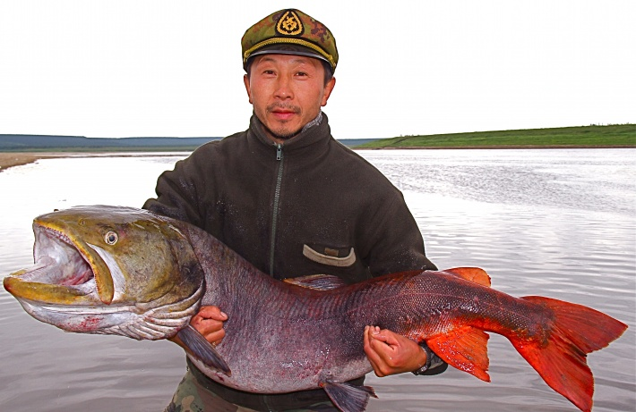 Рыбак с огромным тайменем