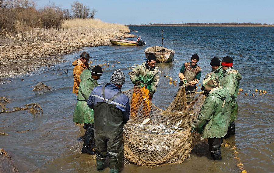 Группа рыбаков с сеткой