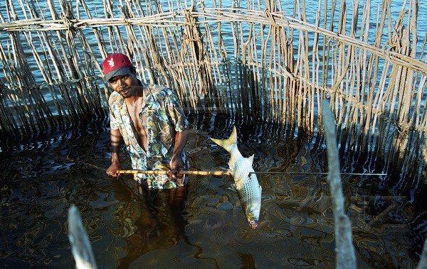 ловить рыбу ныретом