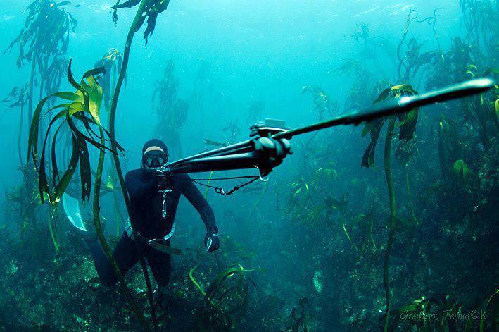 Дайвер в подводной засади