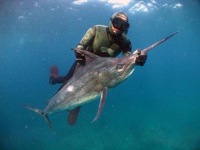 Рыбак с рыбой игла