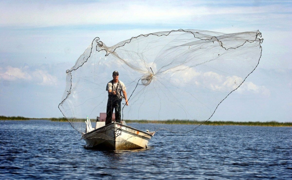 как рыбачить на кастинговую сеть