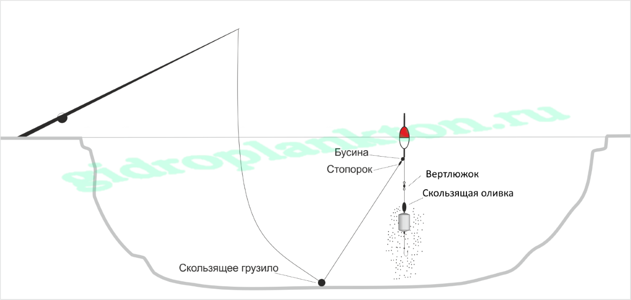 ловля толстолобика на фитопланктон