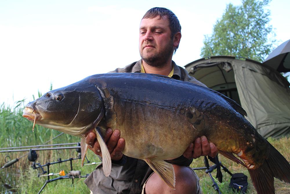 Не бритый рыбак с толстым зеркальным карпам