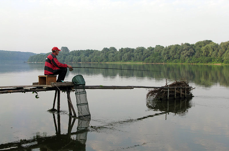 прикорм рыбы на рыбалке