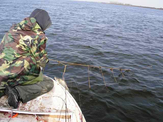 Рыбак в лодке тянет крючковую дорожку