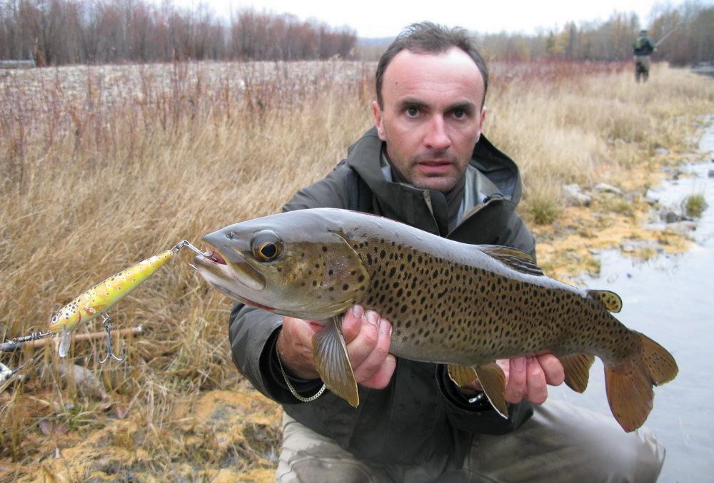 Белорусский рыбак поймал радужную форель