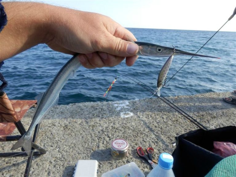 ловим рыбу на удочку в черном море