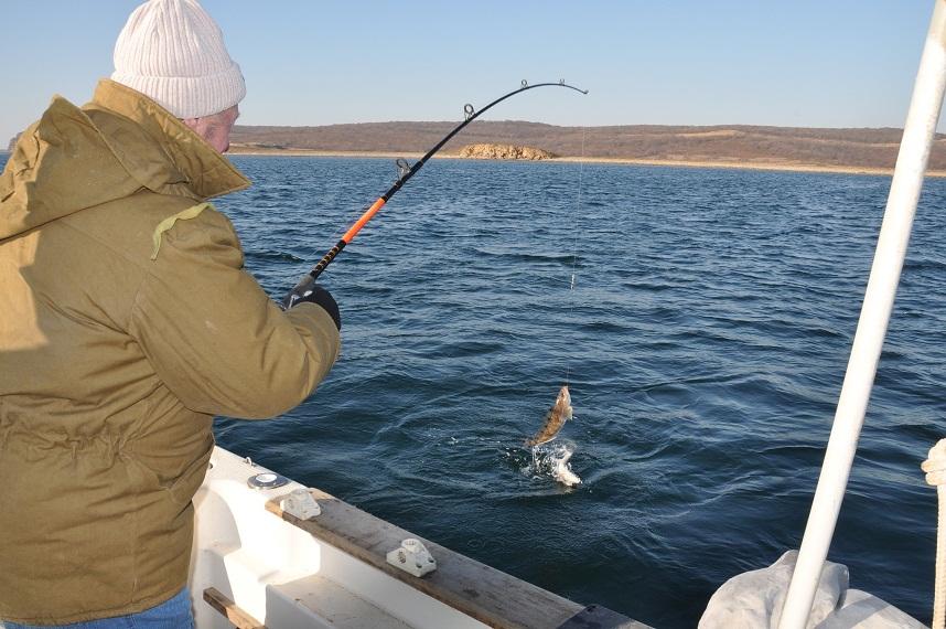 Рыбак поймал рыбу