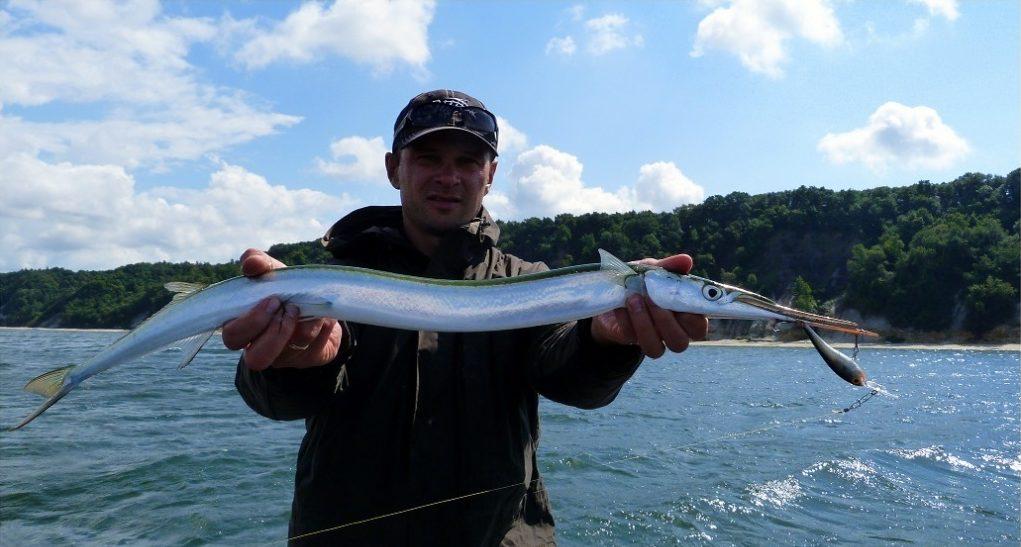 Рыбак с огромным сарганом