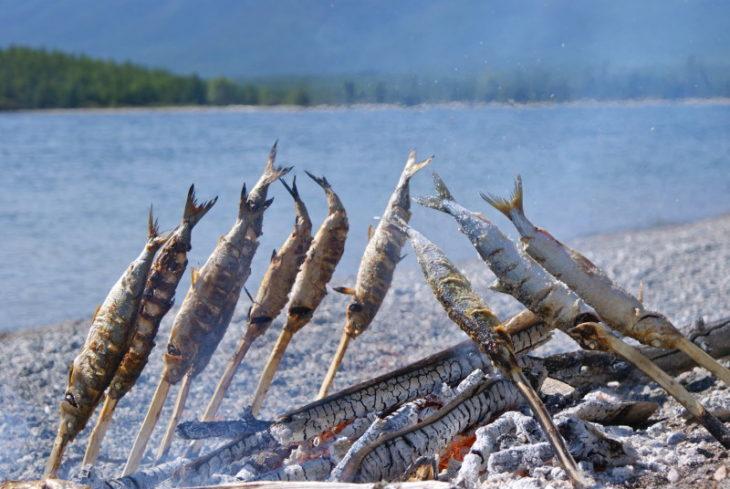 как ловить рыбу в горячих источниках