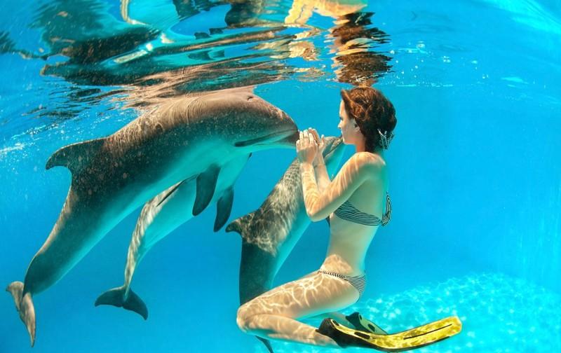 Девушка с дельфинами