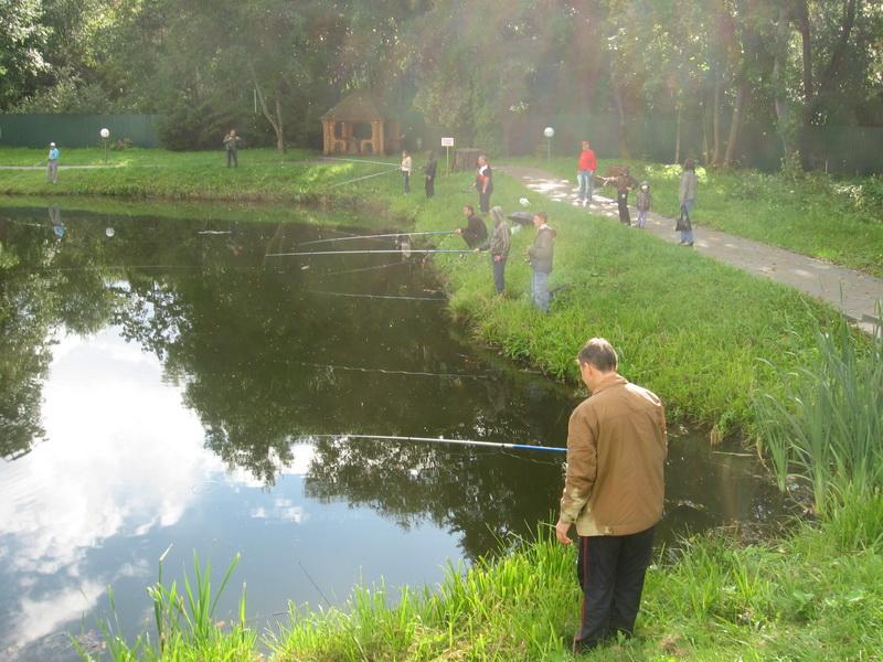 Огромное количество рыбаков на платном пруду