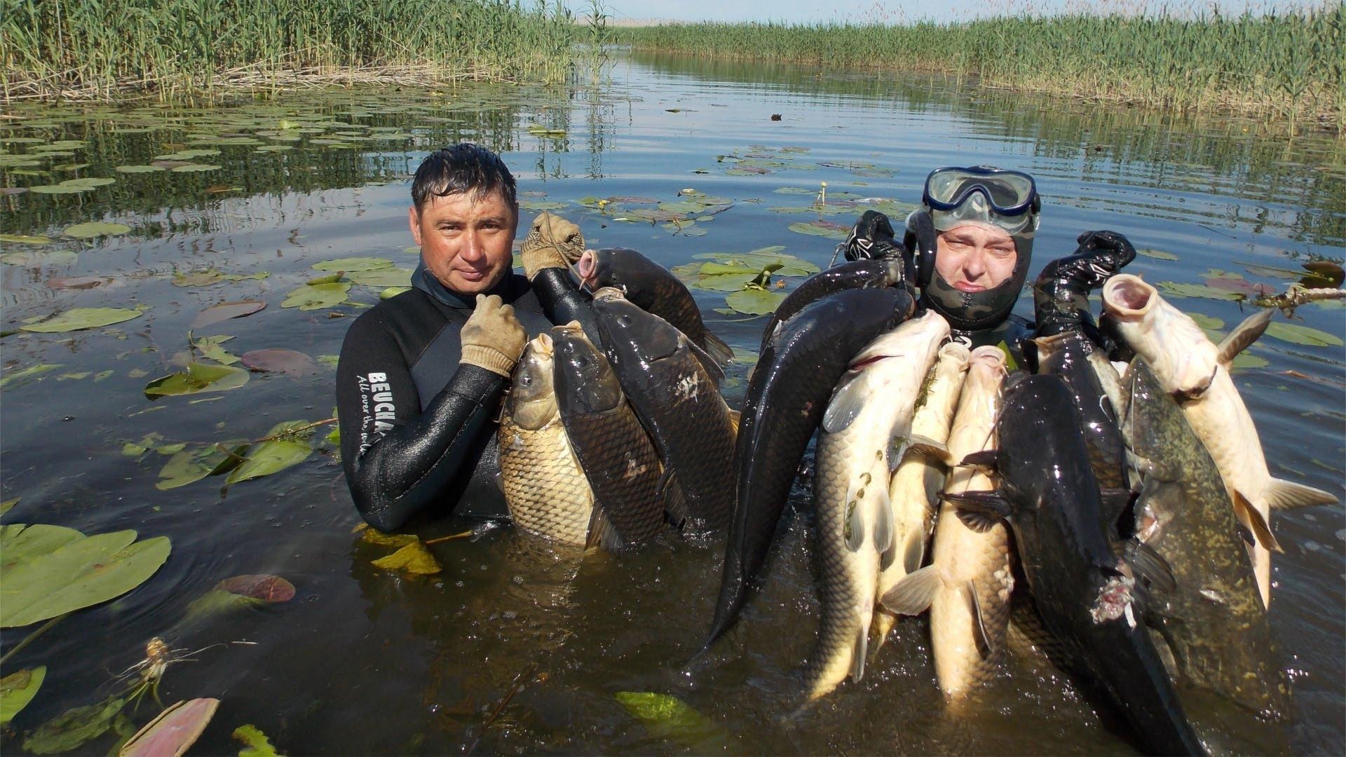 Два рыбака с огромны уловом