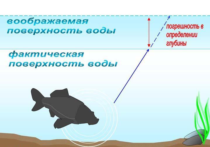 Схема поведения рыбы