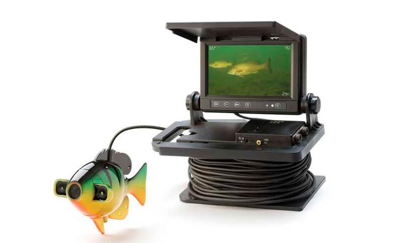 Видео камера в виде рыбки