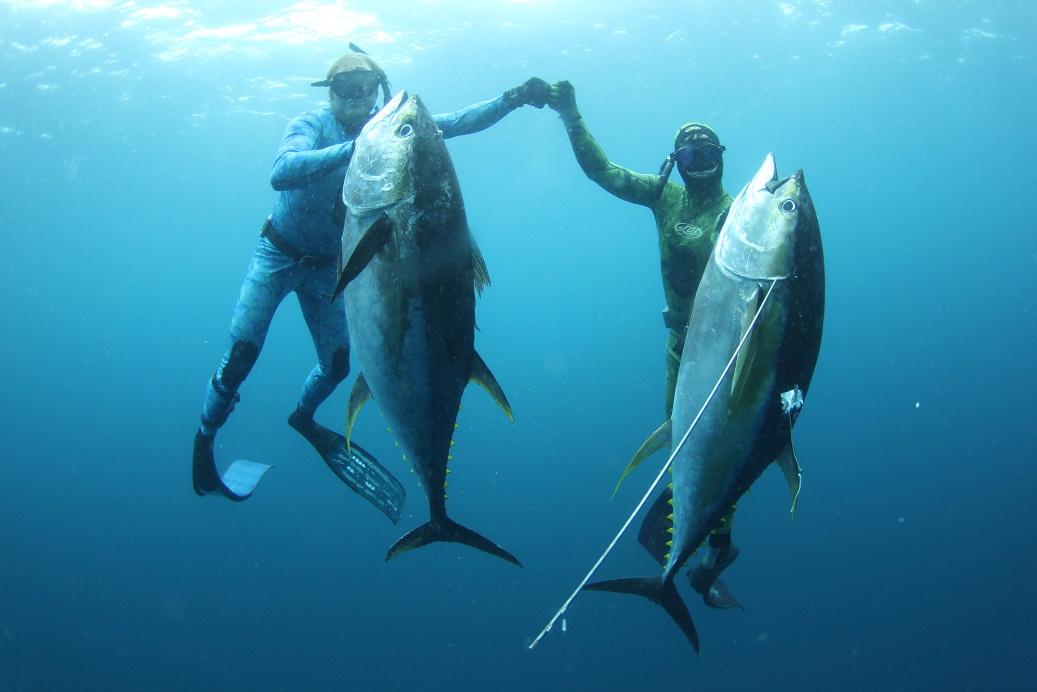 Два подводных охотника с огромными тунцами