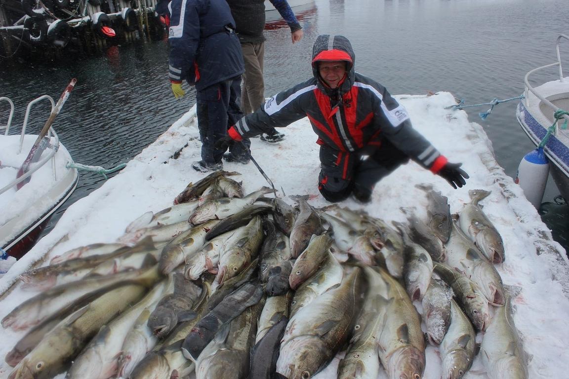 Рыбак и большая куча трески