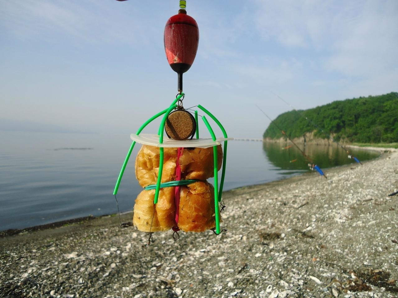 где и как ловить пеленгаса
