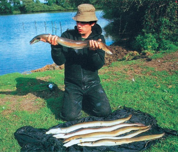 Рыбак с пойманными угрями