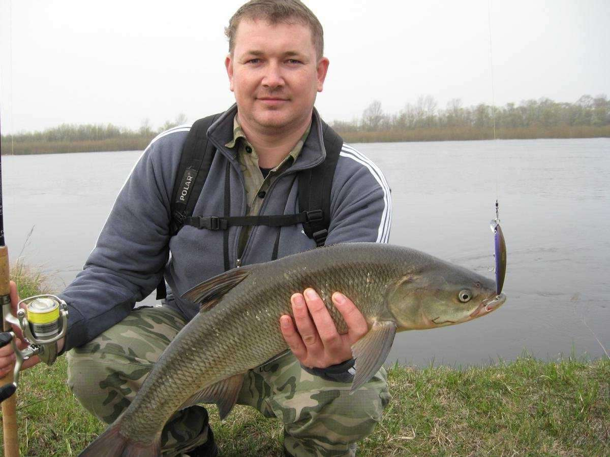 Мужик на берегу реки с рыбой в руках