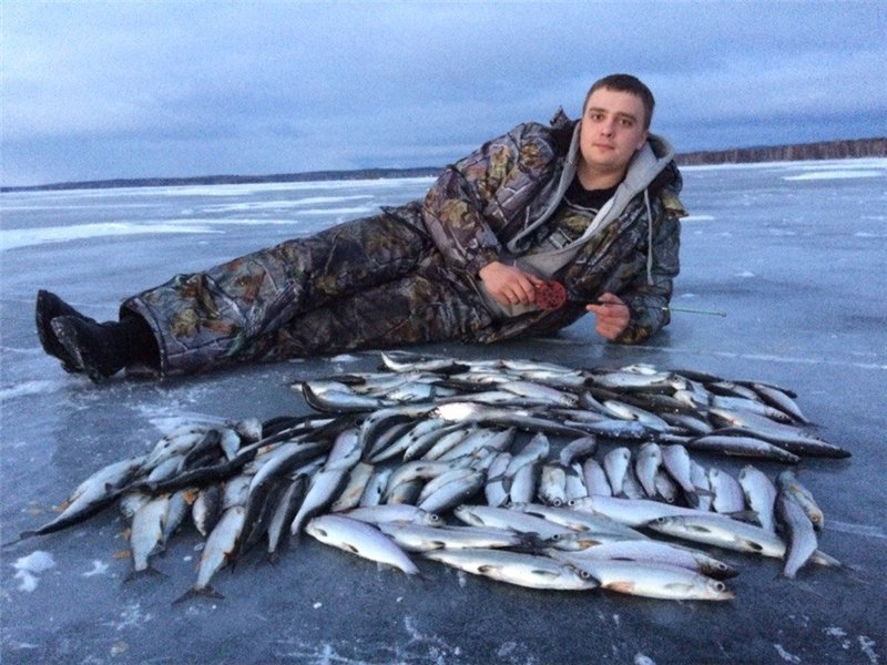 Парень лежит с кучей рыбы на льду