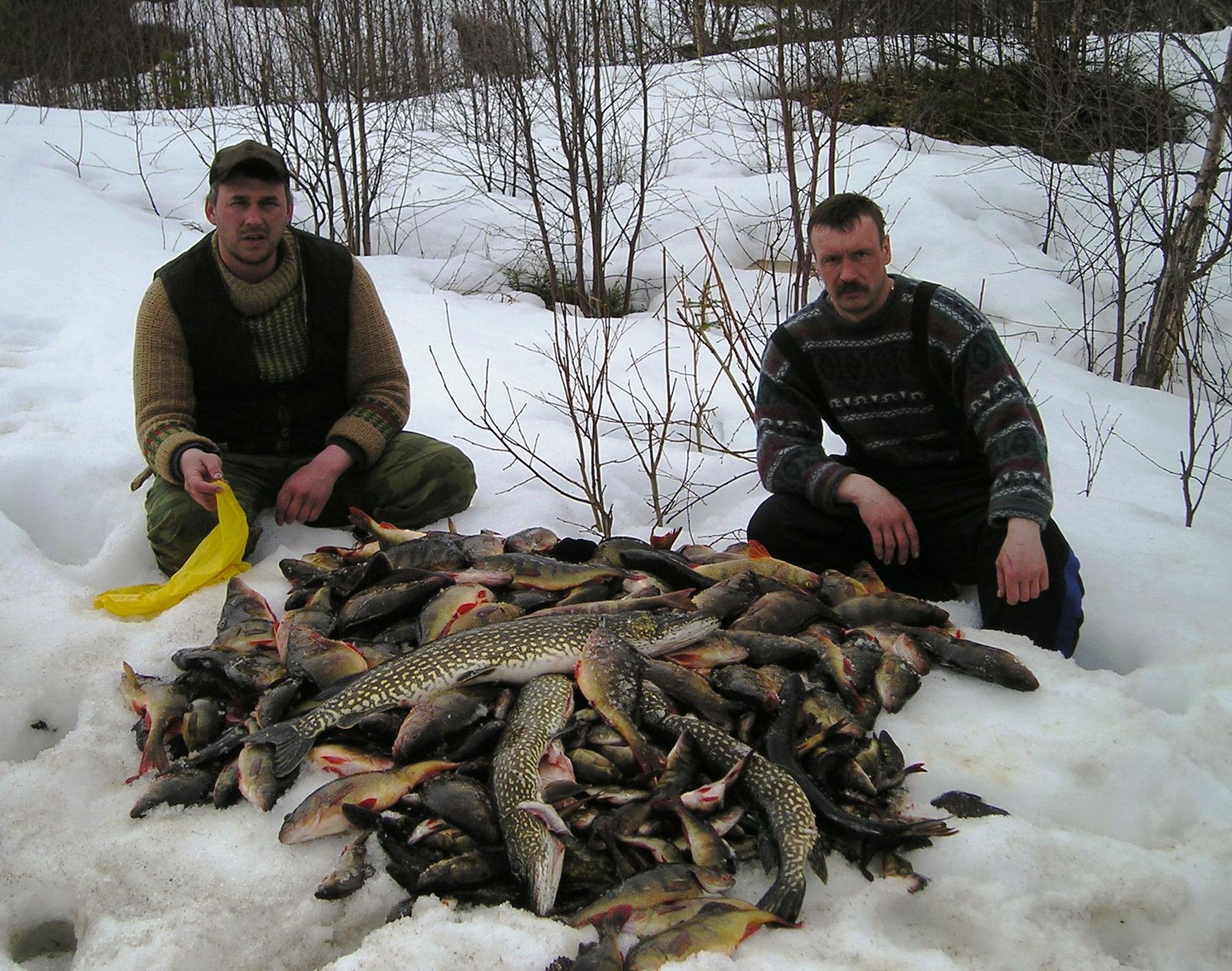 Два рыбака с огромной кучей рыбы