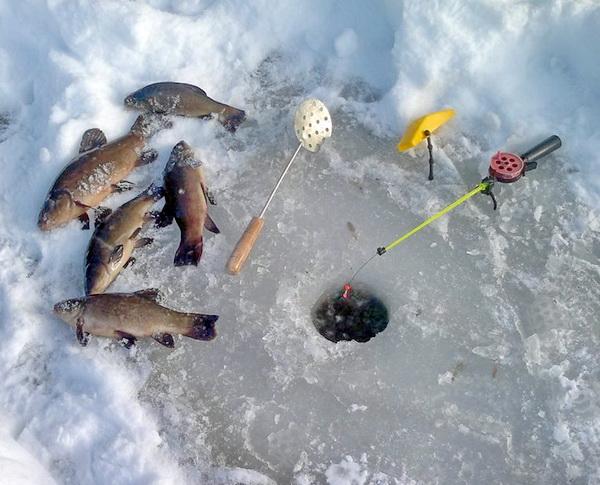 Зимняя удочка и пойманная рыба