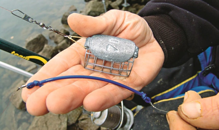Все о донную рыбной ловле на английскую