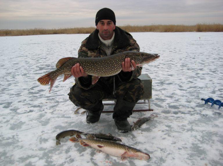 Рыбалка лысый лиман ставропольский край рыбалка