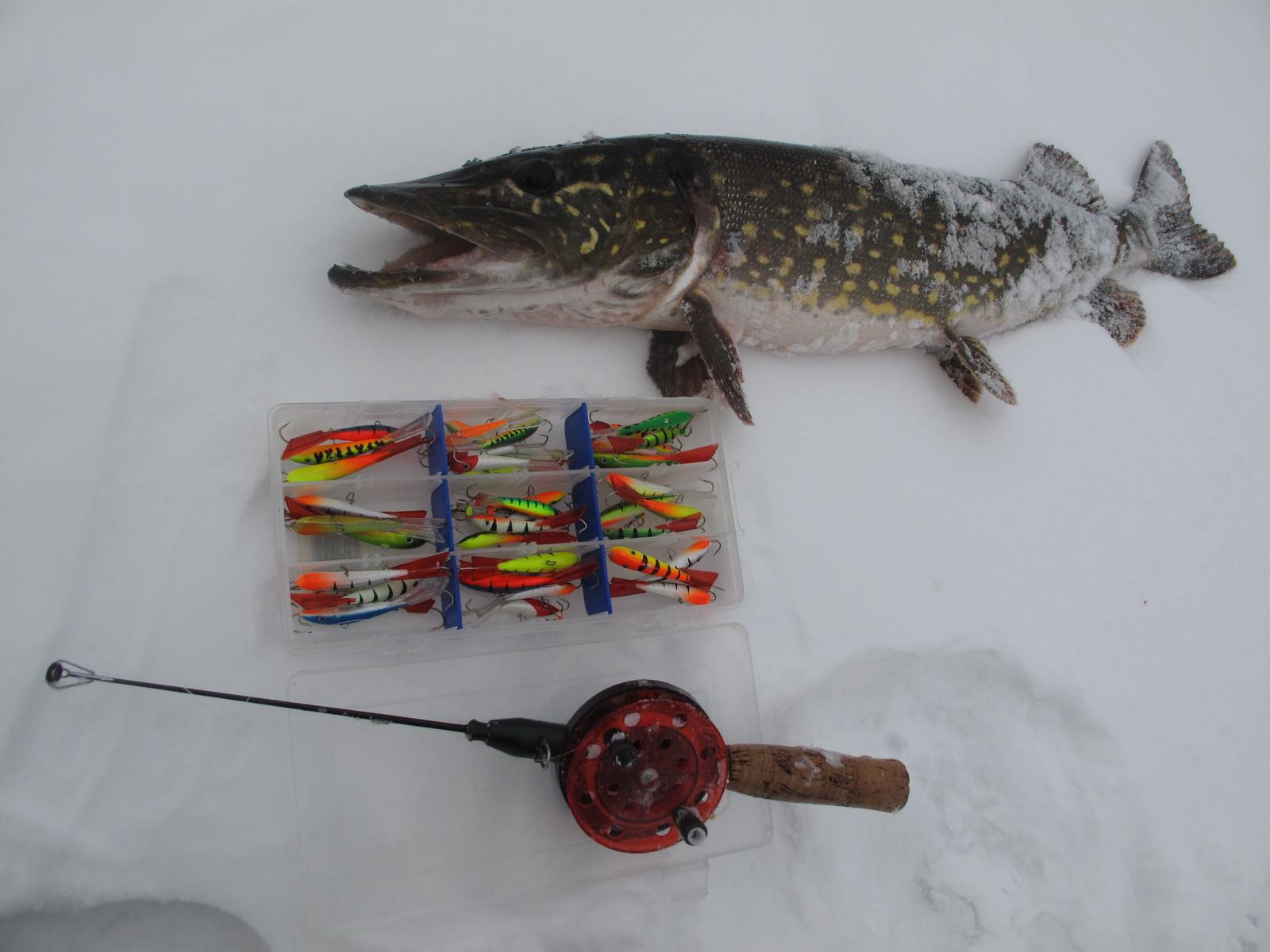 Рыба на льду и коробка с приманками