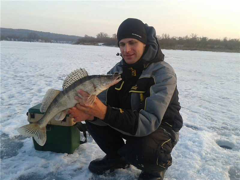 Рыбак с судаком в руках