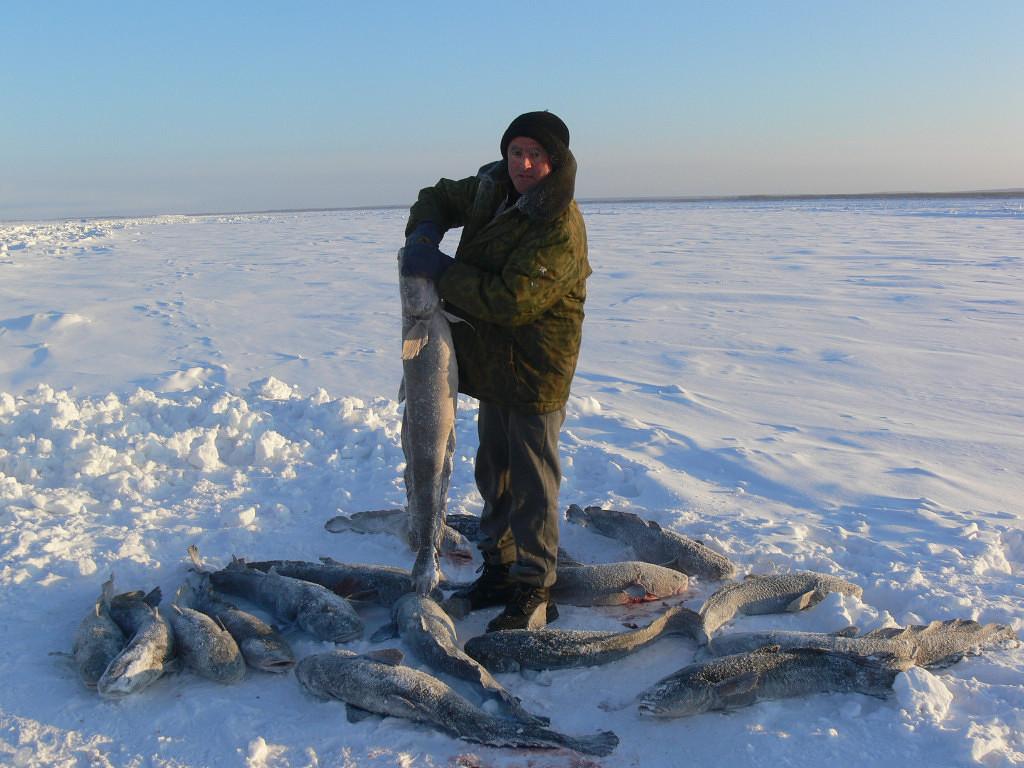 Рыбак на льду с рыбой