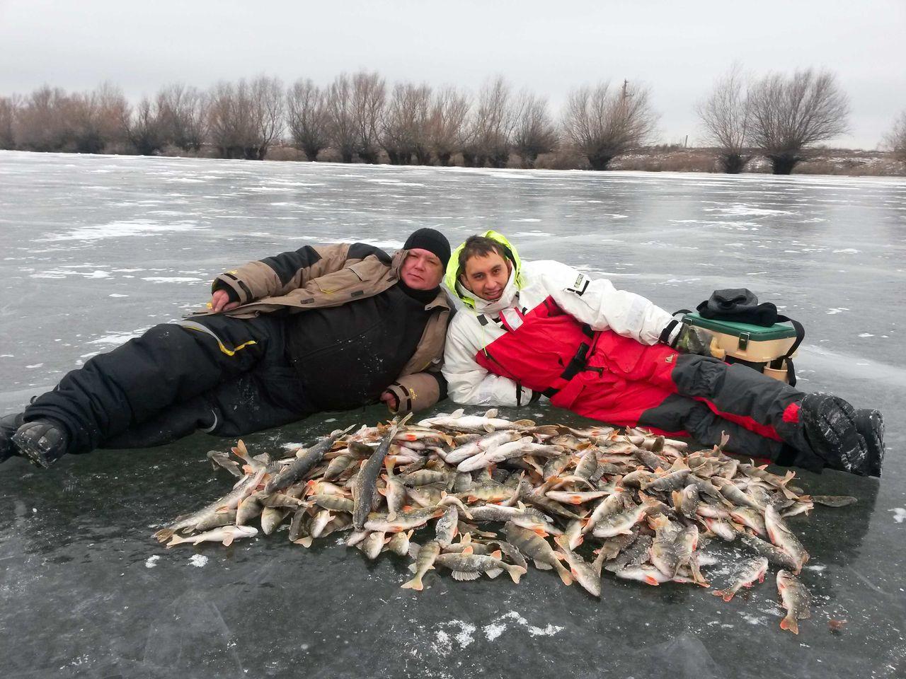 Два рыбака с приличным уловом окуней