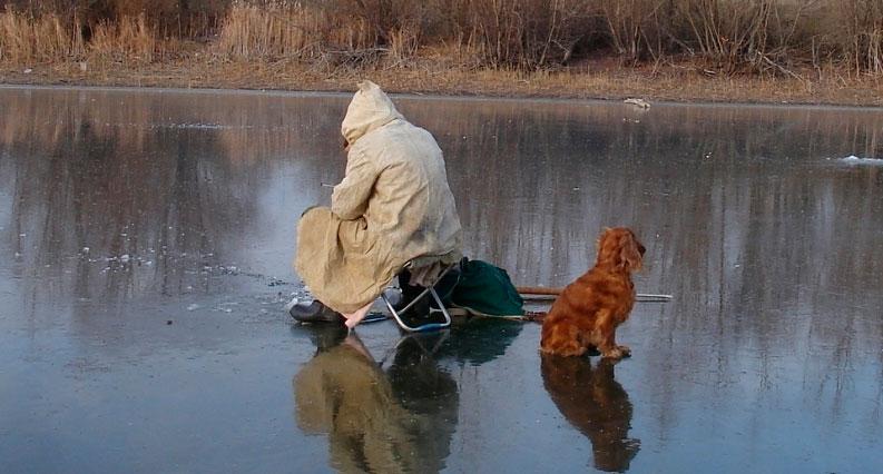 Рыбак с собакой на льду