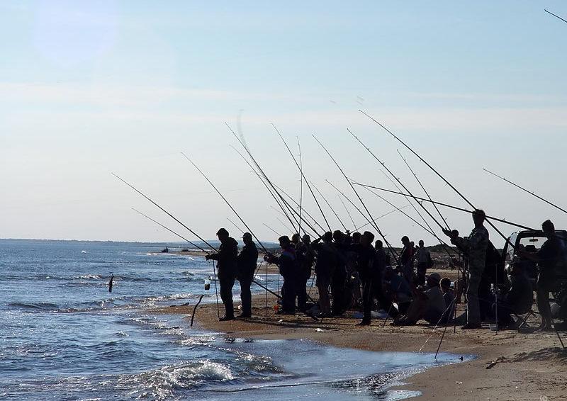Толпа рыбаков на берегу моря