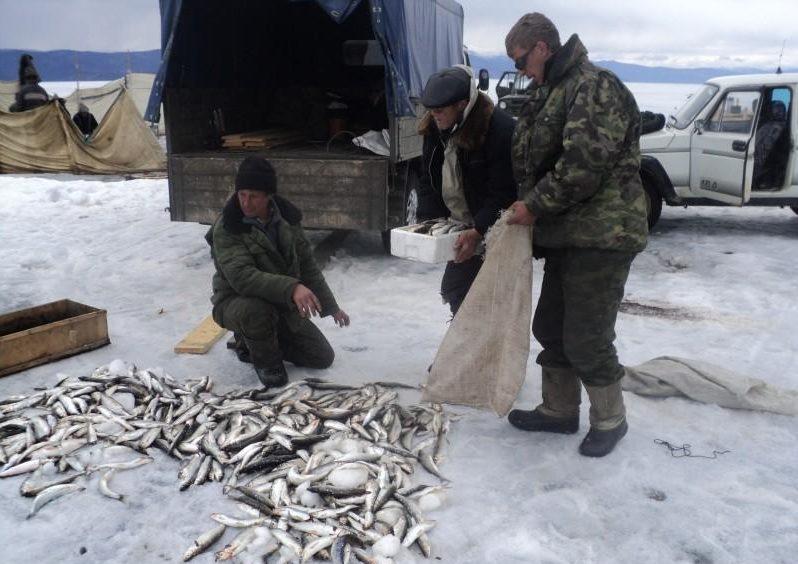 Рыбаки с мешками делят пойманную рыбу